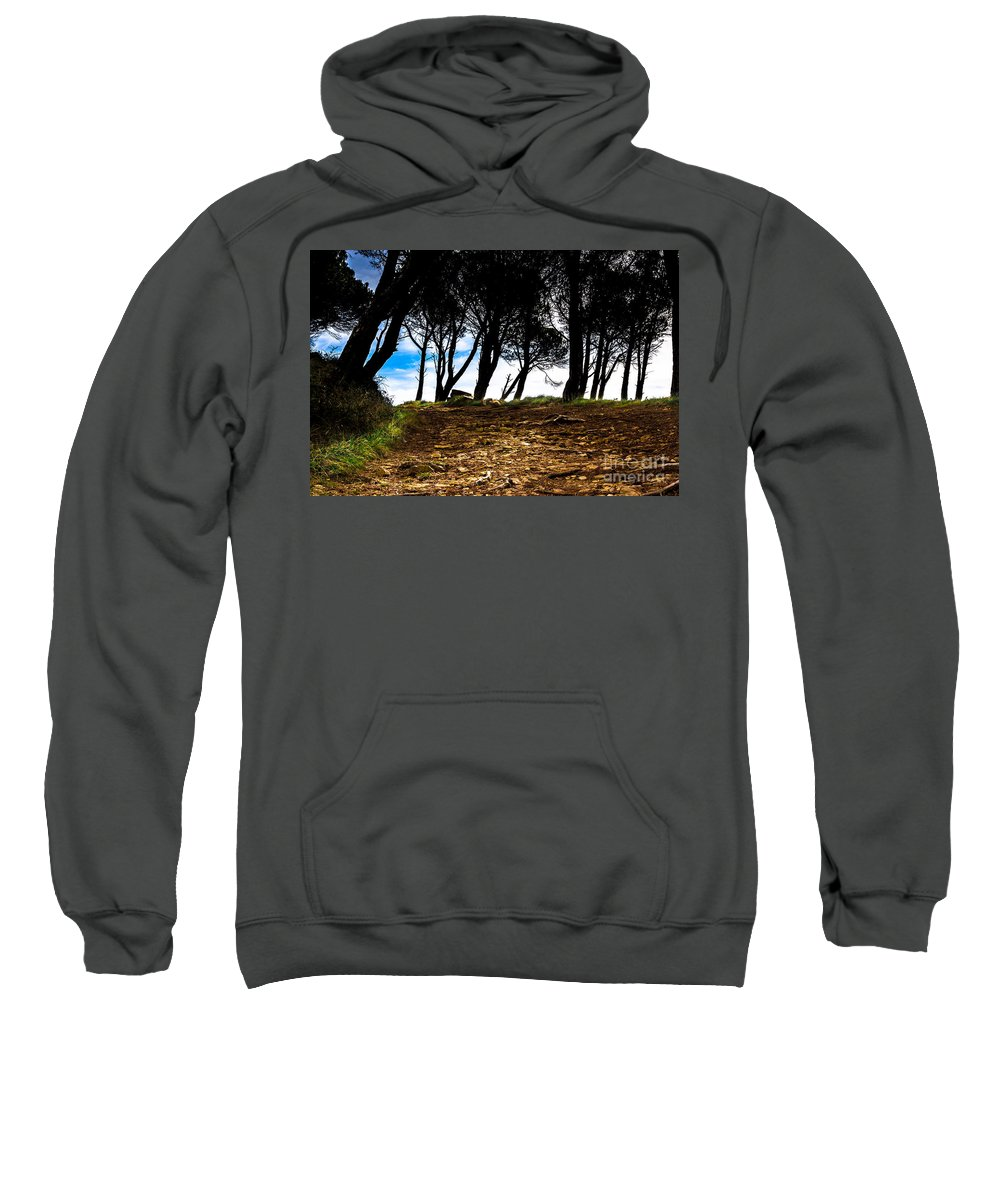 Forest Sweatshirt featuring the photograph Mystery Of The Forest by Edgar Laureano