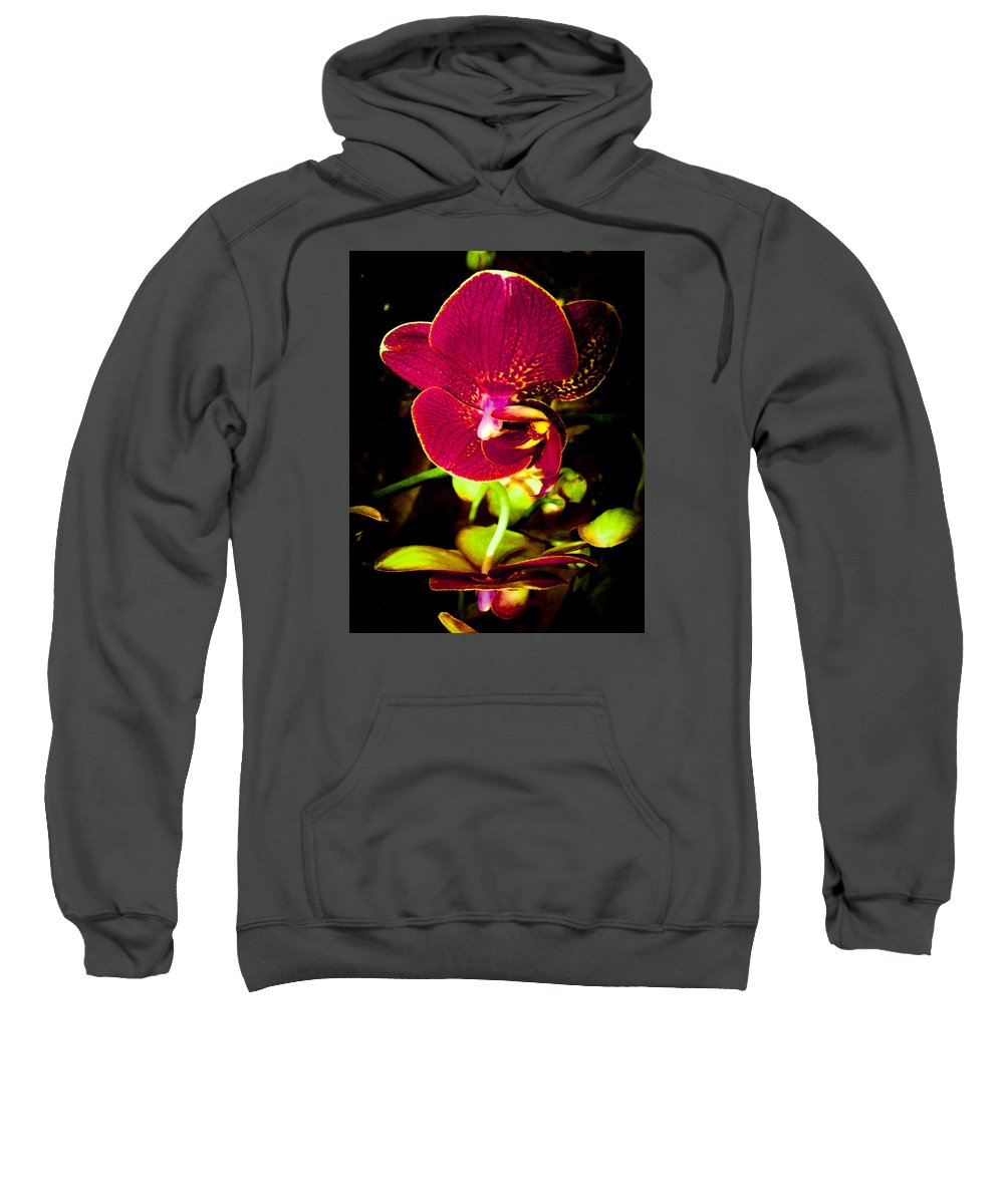 Red Sweatshirt featuring the photograph Natural Beauty by Luma Studio designs
