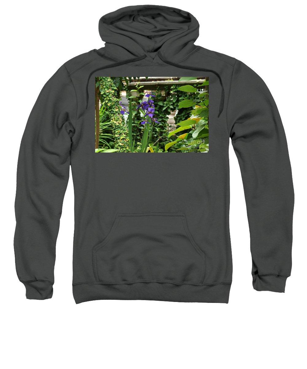 Naturaly Sculptured Beauty Sweatshirt featuring the photograph Naturally Sculptured Beauty by Kim Pate