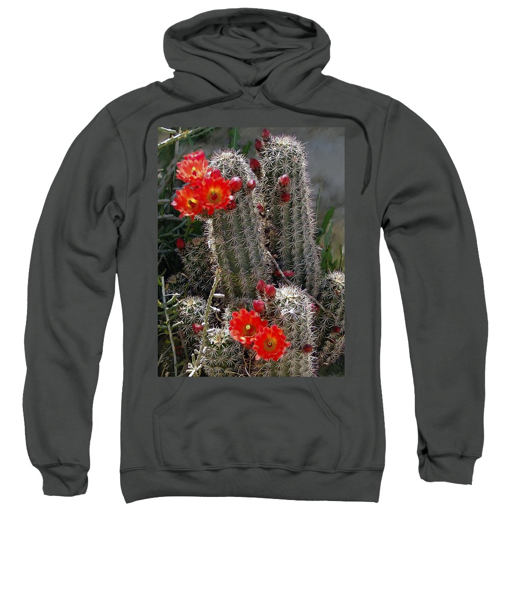 Cactus Sweatshirt featuring the photograph New Mexico Cactus by Kurt Van Wagner