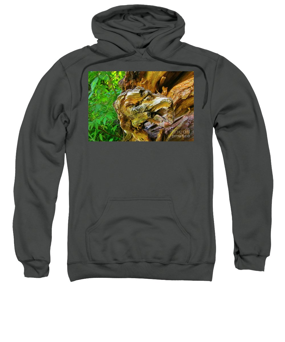 Formations In Wood Sweatshirt featuring the photograph No I Dont Bite by John Malone
