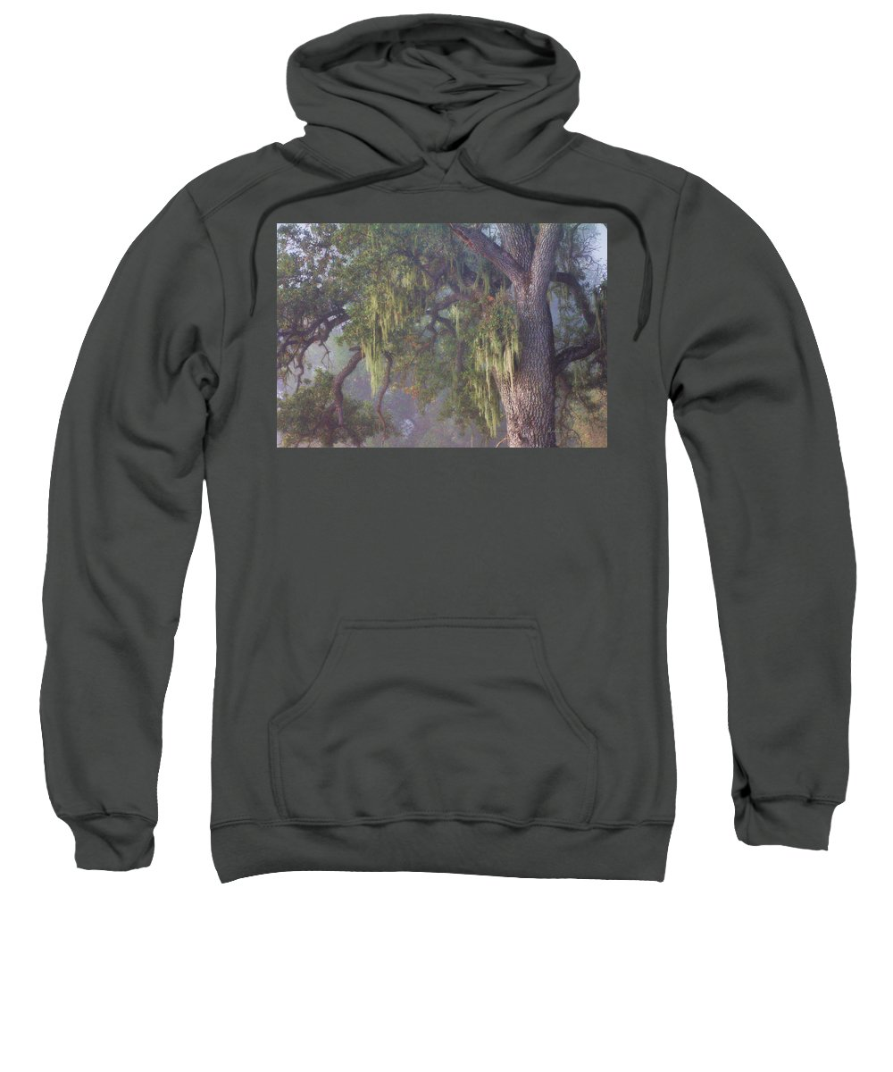 Oak Tree Sweatshirt featuring the photograph Oak Tree And Spanish Moss In The Mist by Stephanie Laird