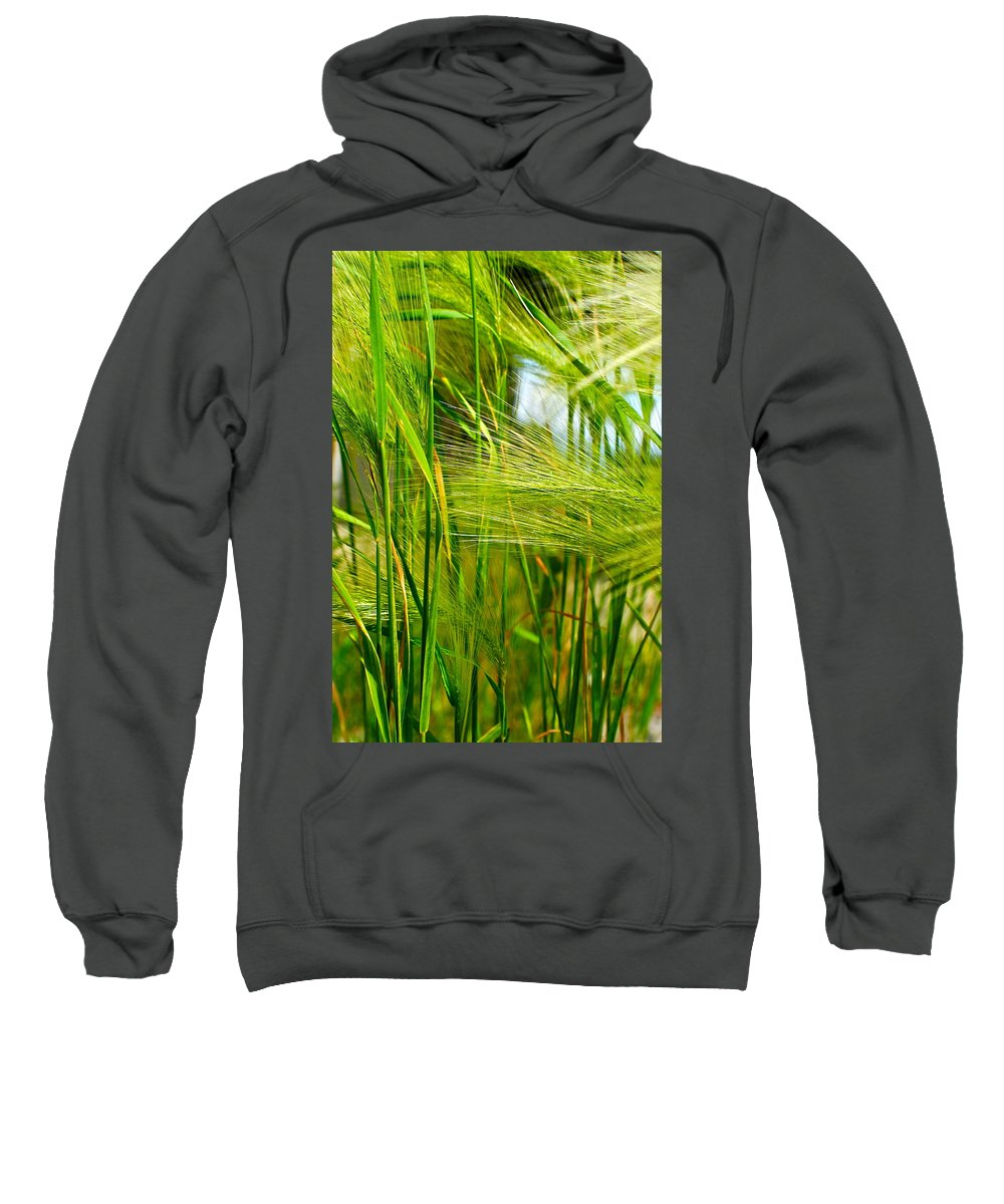 Ocean Sweatshirt featuring the photograph Ocean Breeze by Frozen in Time Fine Art Photography