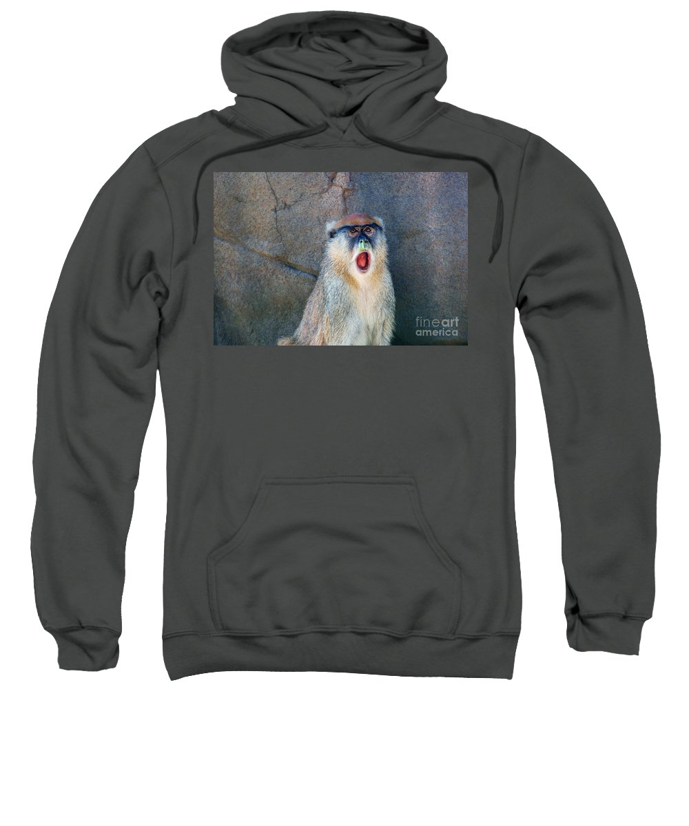Monkey Sweatshirt featuring the photograph Oh Did You See That? by Rich Priest