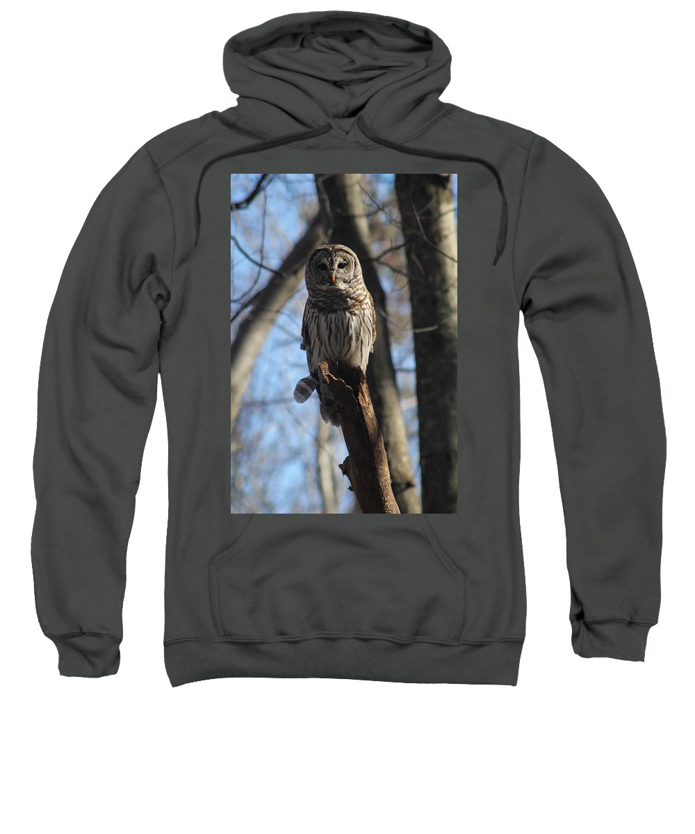 Owl Sweatshirt featuring the photograph Oliver by Jessica Brawley