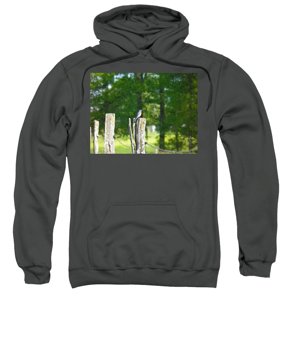 Bluebird Sweatshirt featuring the photograph On The Hunt 2 by Nick Kirby