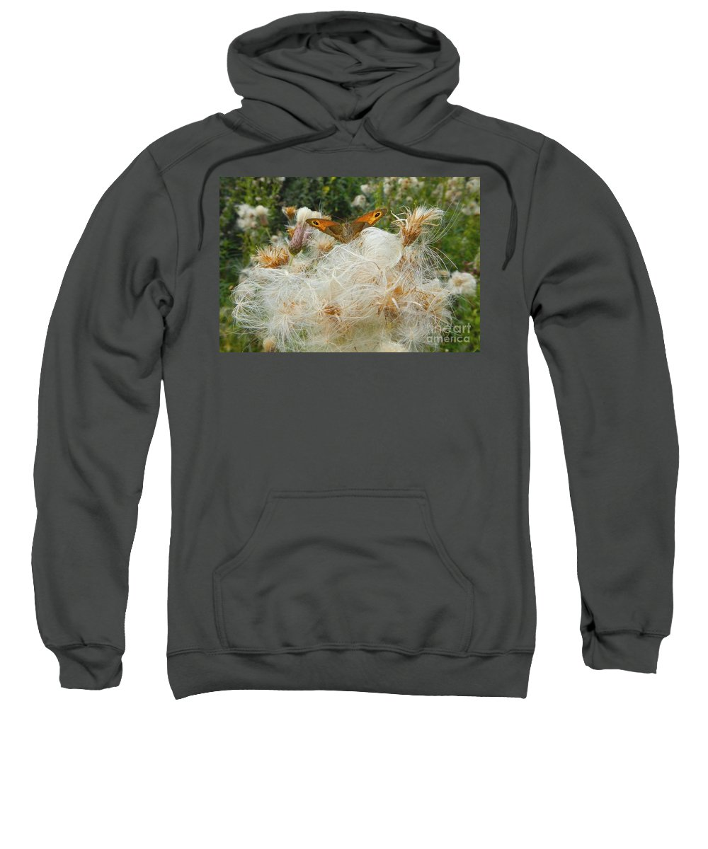 Summer Sweatshirt featuring the photograph On The Soft Pillow by Loreta Mickiene