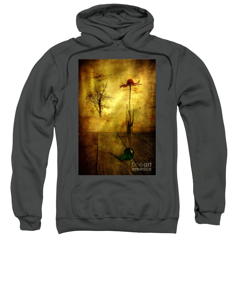 Artist Sweatshirt featuring the photograph On The Table by Veikko Suikkanen