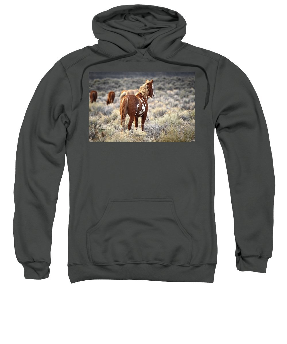 On Watch Sweatshirt featuring the photograph On Watch by Wes and Dotty Weber