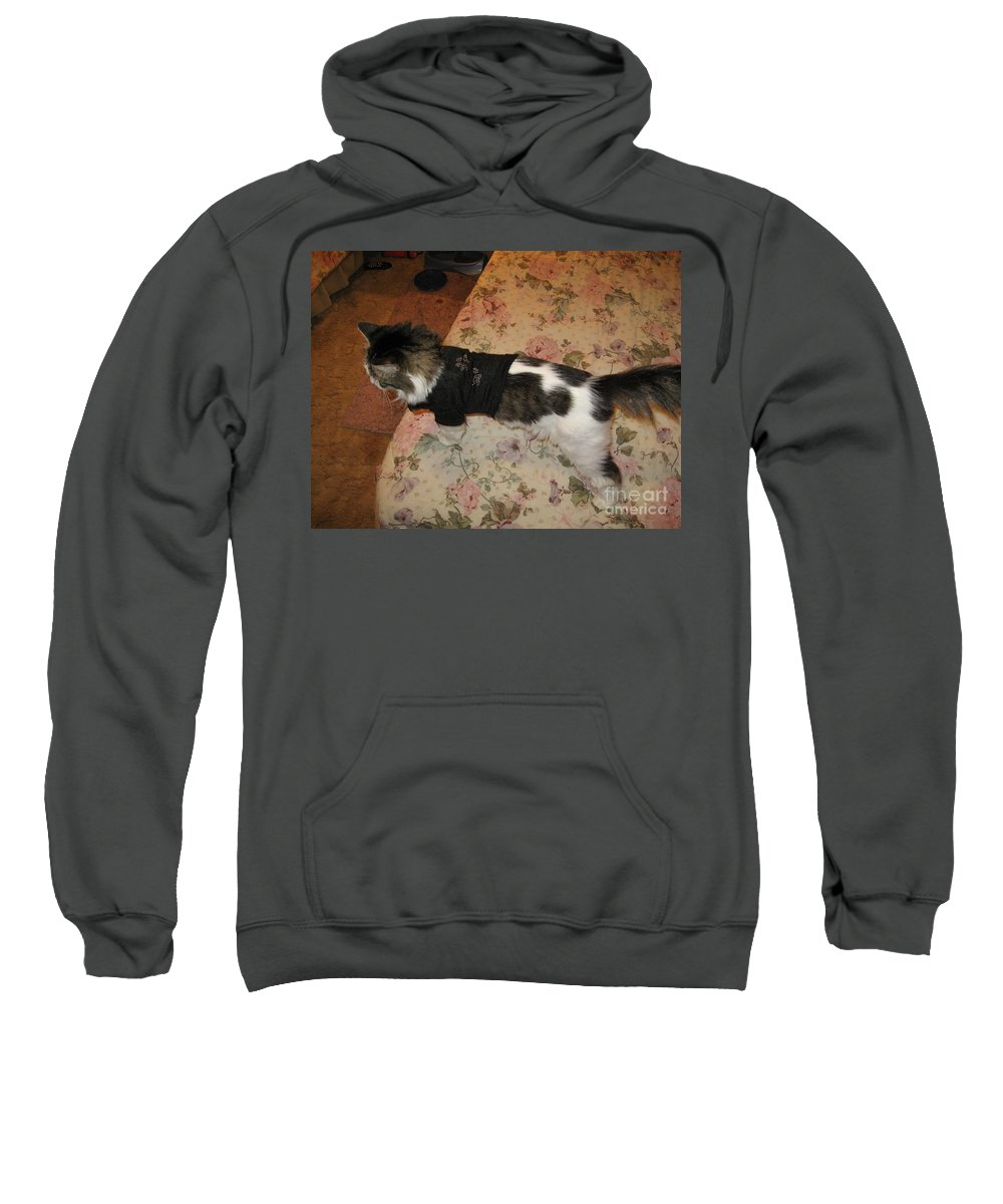 One Sweatshirt featuring the photograph One Cool Cat by Frederick Holiday