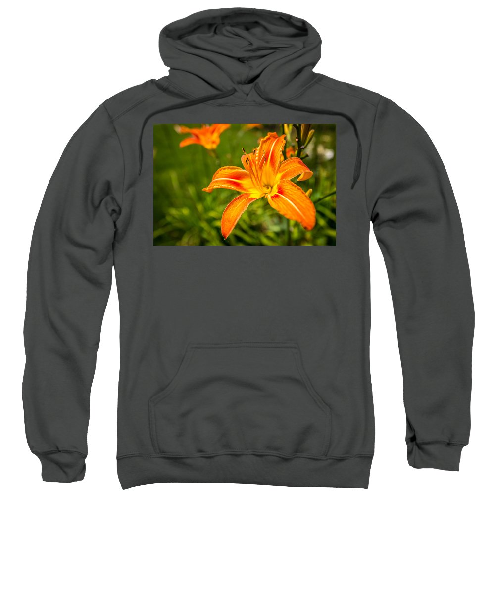 Flower Sweatshirt featuring the photograph Orange Lily by Todd Reese