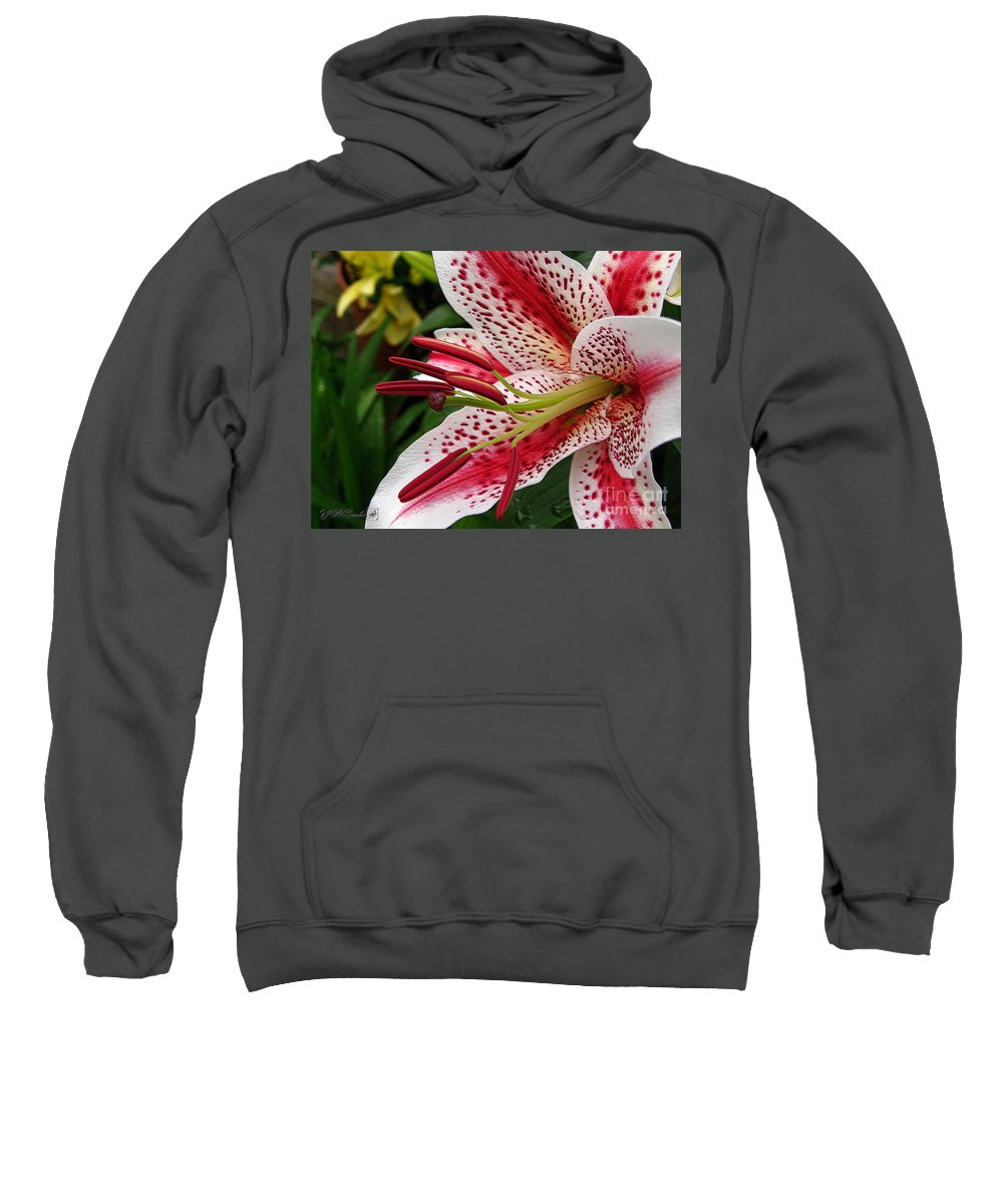 Oriental Lily Sweatshirt featuring the photograph Oriental Hybrid Lily Named Dizzy by J McCombie