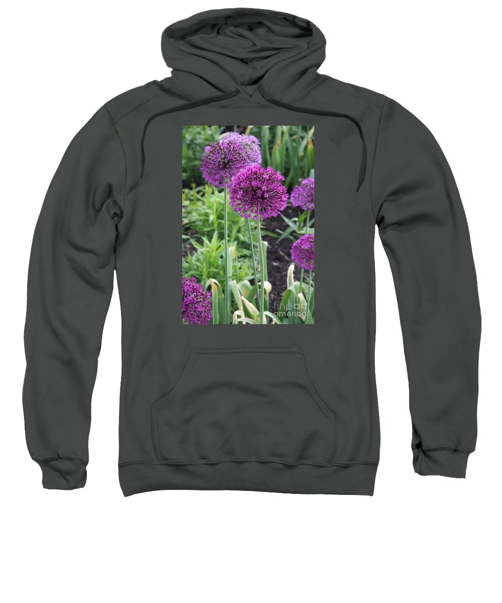 Flowers Sweatshirt featuring the photograph Ornamental Leek Flower by Christiane Schulze Art And Photography