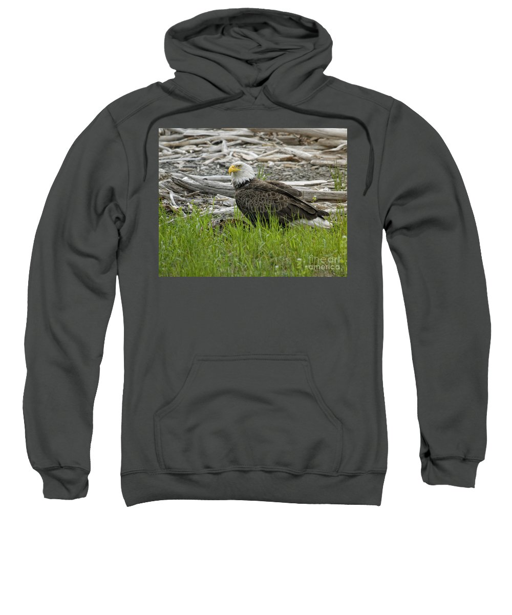 Eagles Sweatshirt featuring the photograph Outdoor Dining by Claudia Kuhn