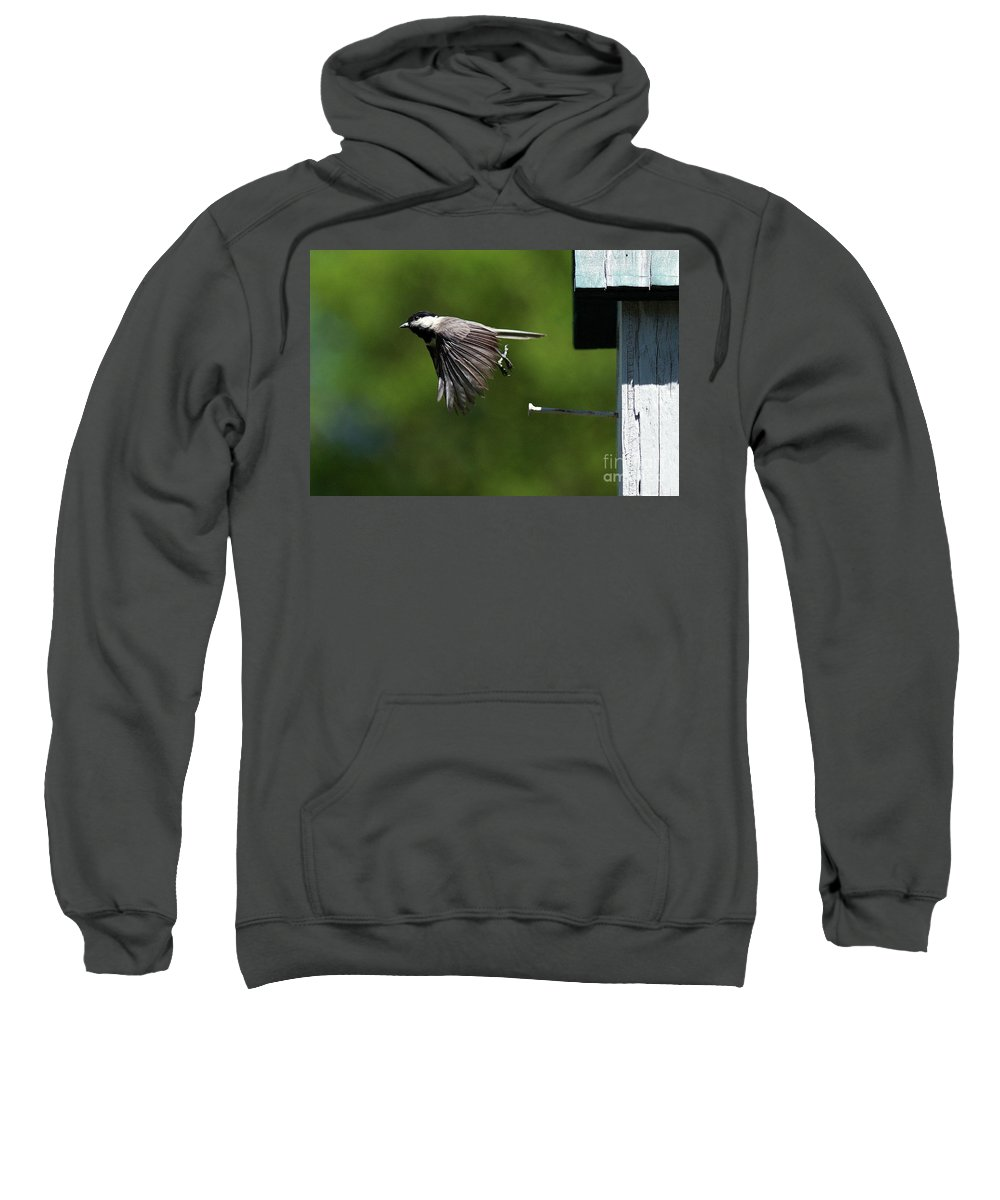 Chickadee Sweatshirt featuring the photograph Outgoing by Douglas Stucky