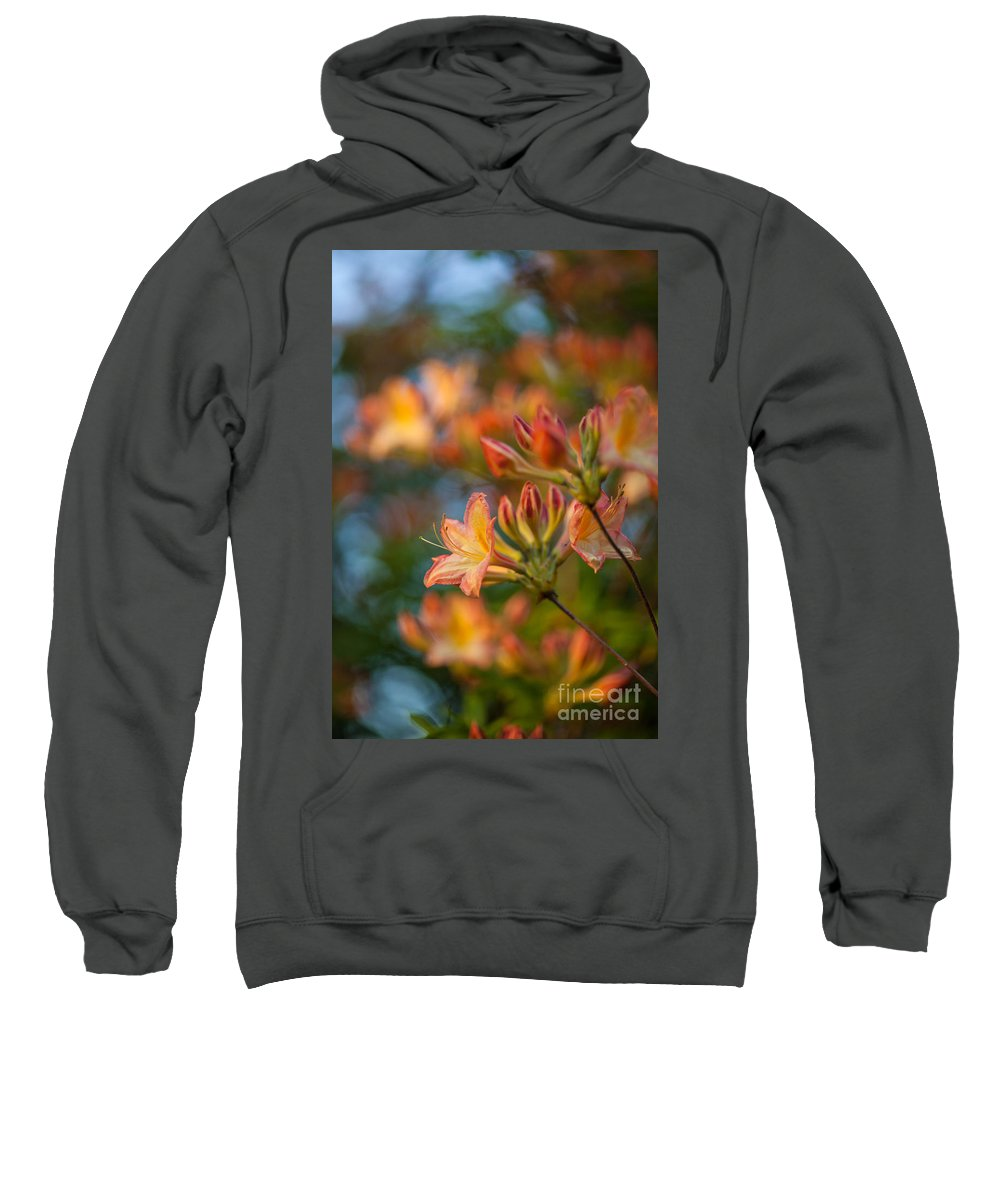 Rhododendron Sweatshirt featuring the photograph Painterly Rhodies by Mike Reid