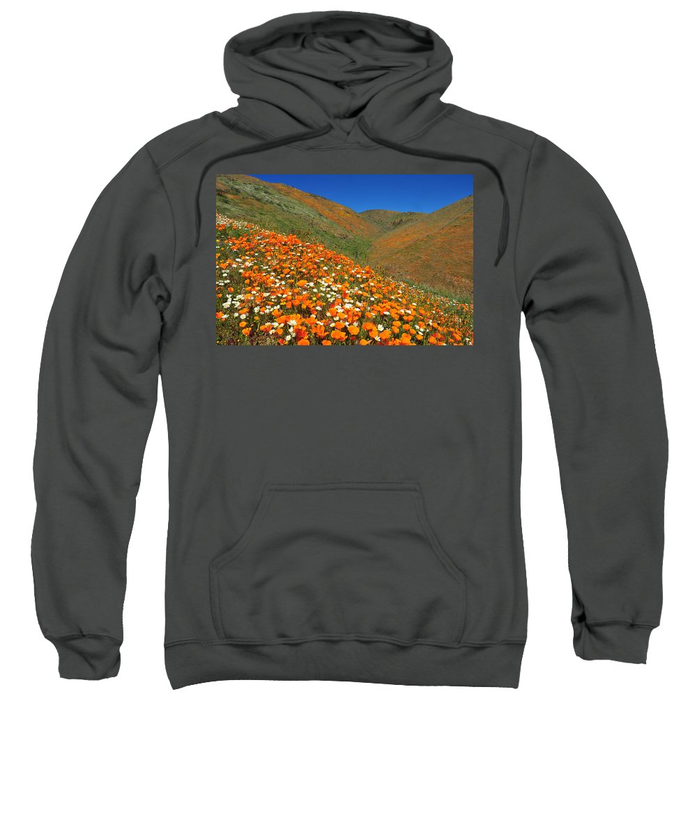Spring Sweatshirt featuring the photograph Palmdale Poppies by Lynn Bauer