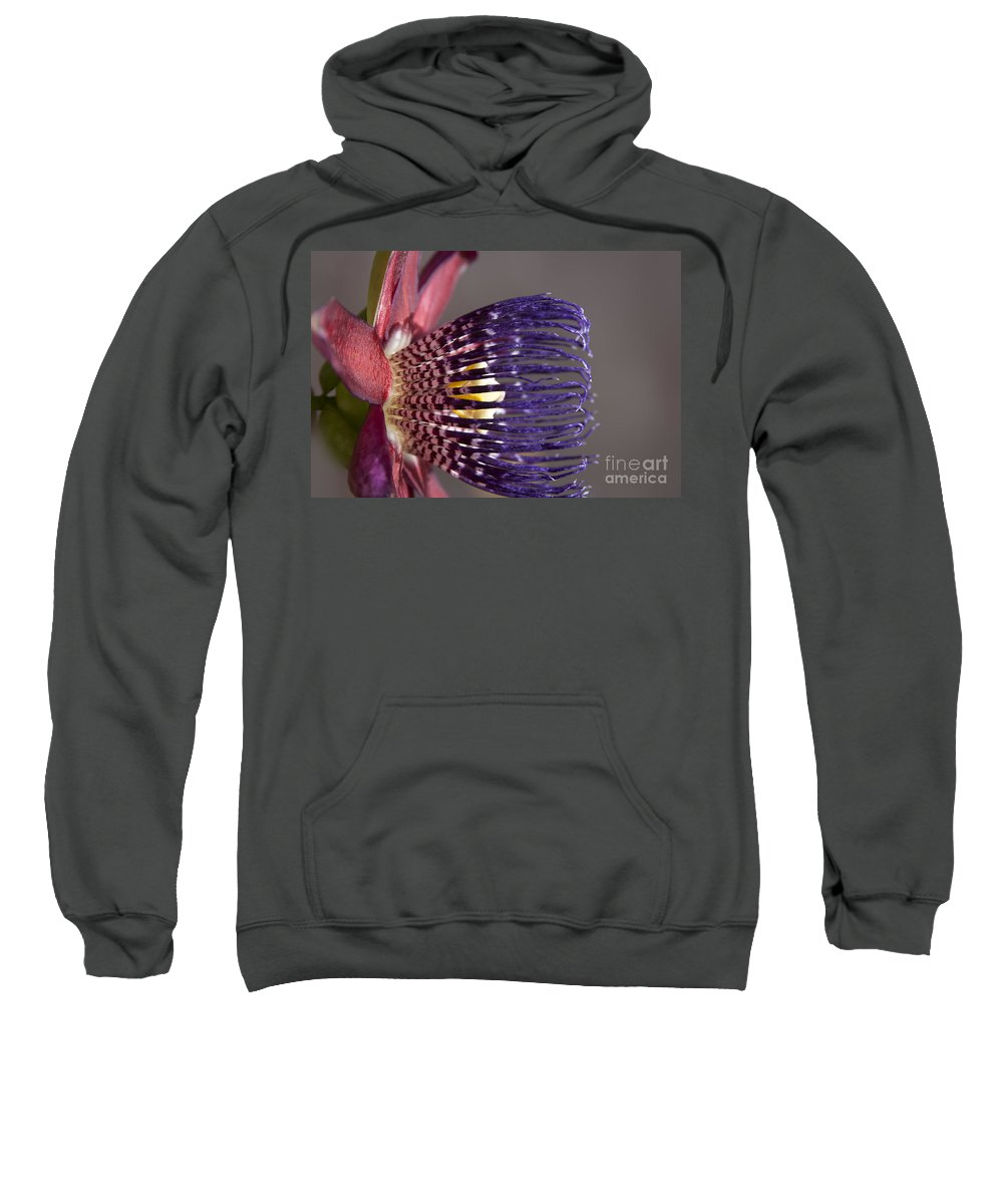 Aloha Sweatshirt featuring the photograph Passiflora Alata - Passion Flower - Ruby Star - Ouvaca by Sharon Mau