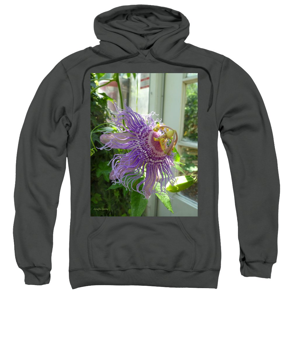Flower Macro Sweatshirt featuring the photograph Passion Flower by Lingfai Leung