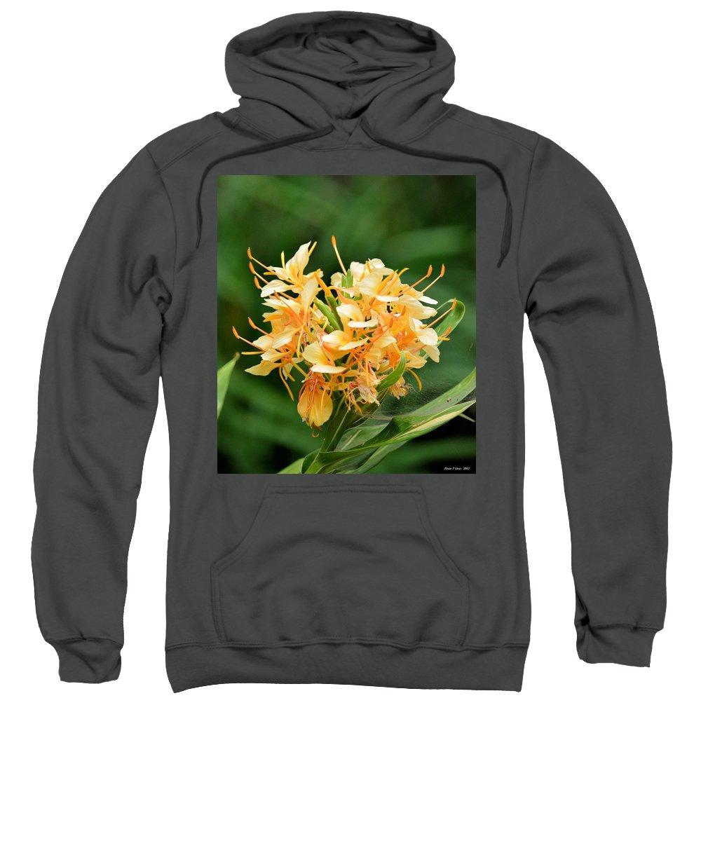 Pastel Peach Petals Sweatshirt featuring the photograph Pastel Peach Petals by Maria Urso