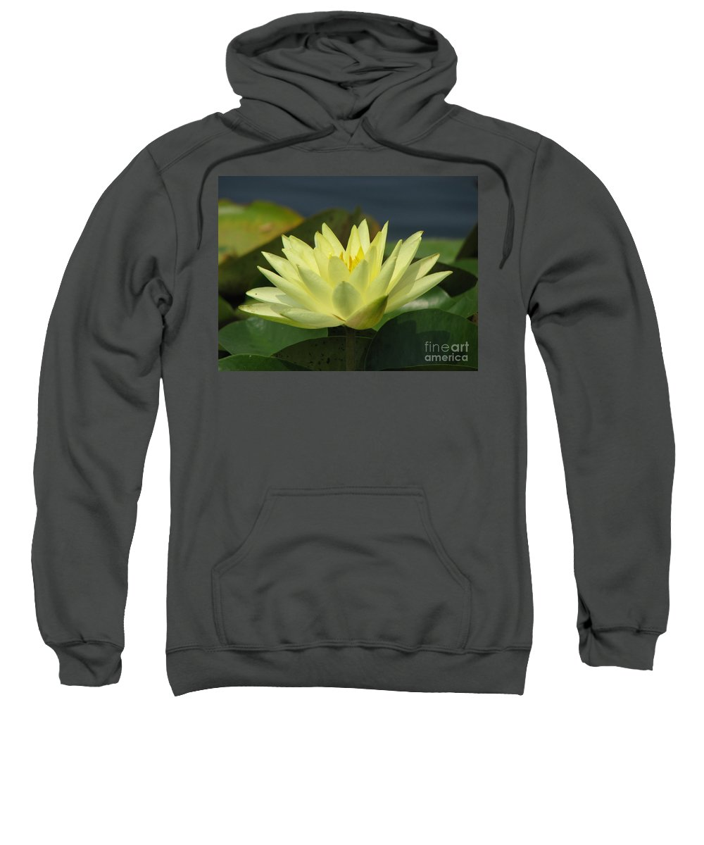 Lillies Sweatshirt featuring the photograph Peace by Amanda Barcon