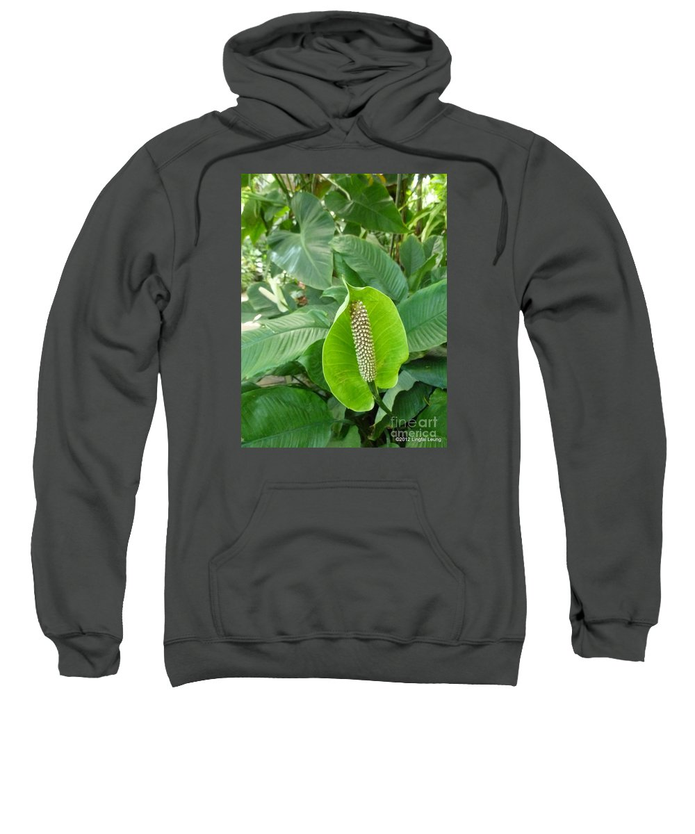 Foliage Sweatshirt featuring the photograph Peace Lily by Lingfai Leung