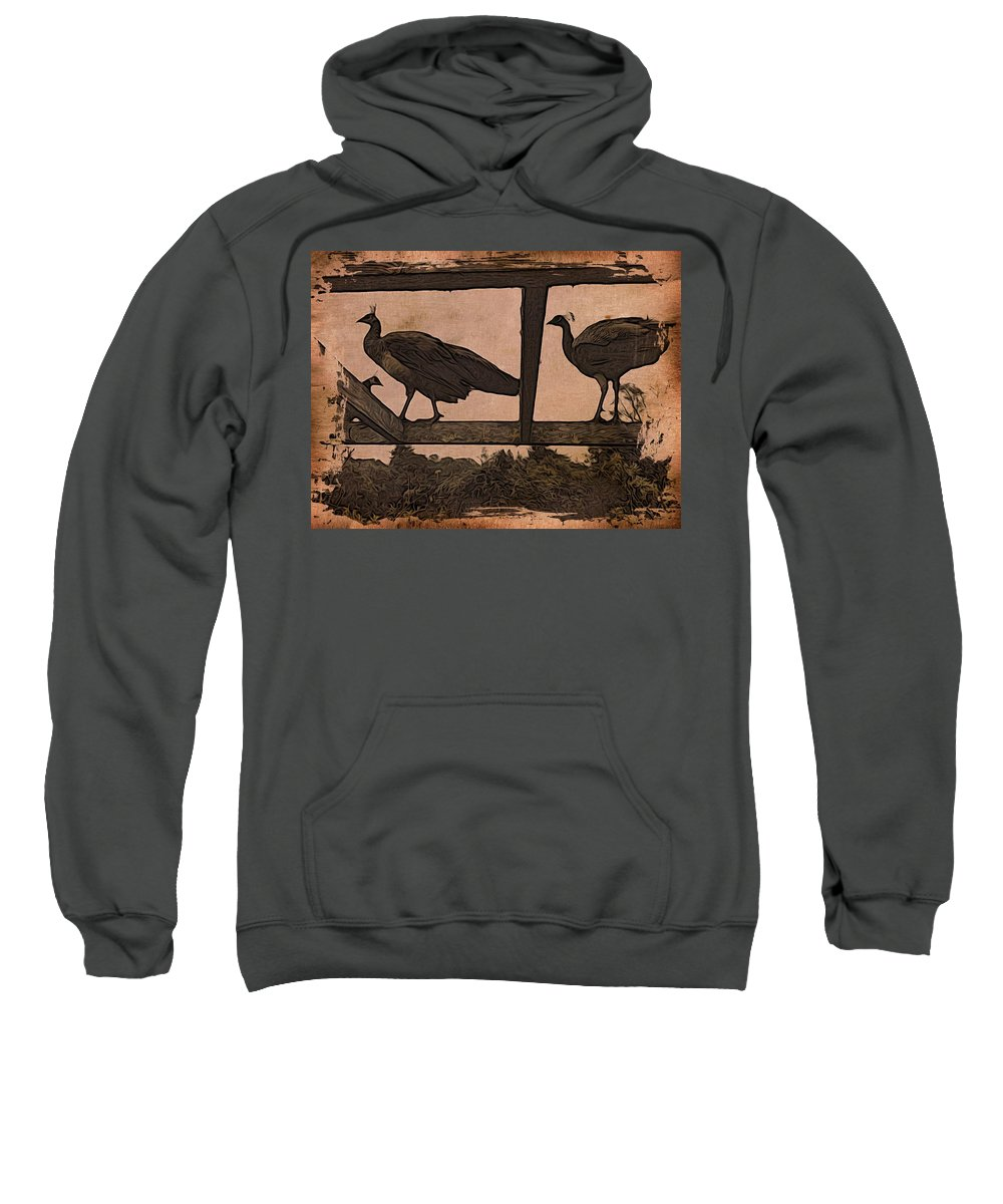 Peahens Sweatshirt featuring the photograph Peahens by Suzy Norris