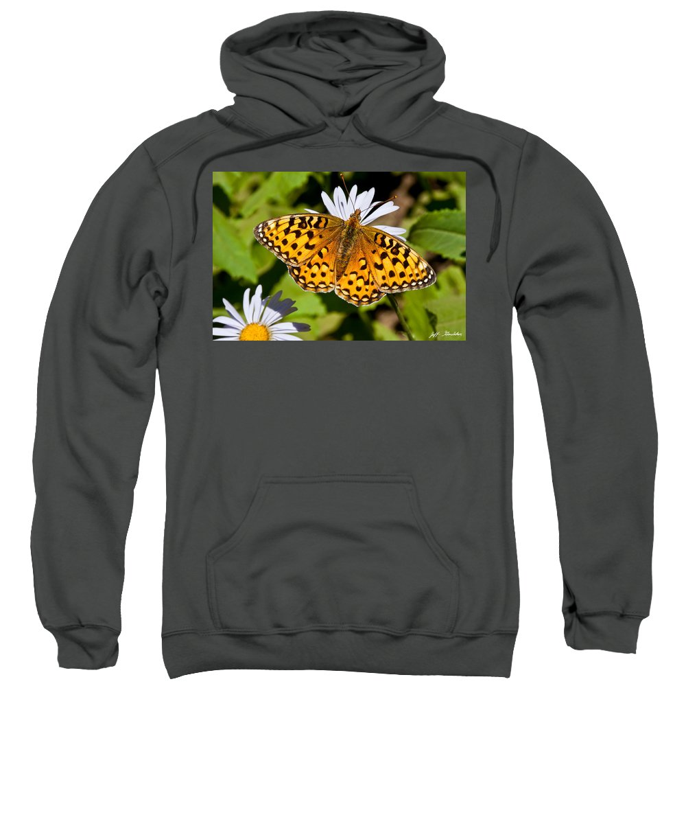 Aster Sweatshirt featuring the photograph Pearl Border Fritillary Butterfly On An Aster Bloom by Jeff Goulden