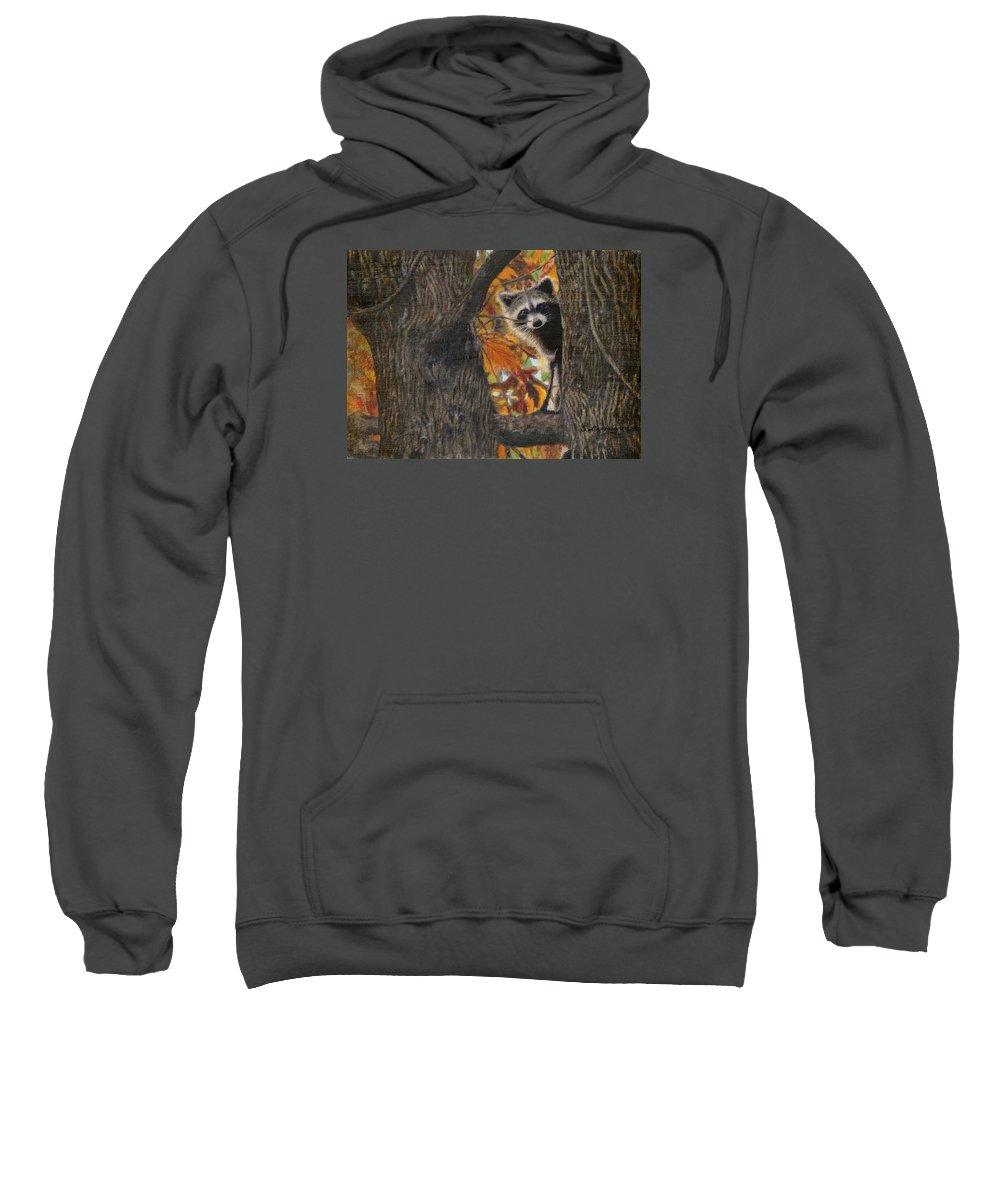 Raccoon Sweatshirt featuring the painting Peeking Bandit by Sherryl Lapping