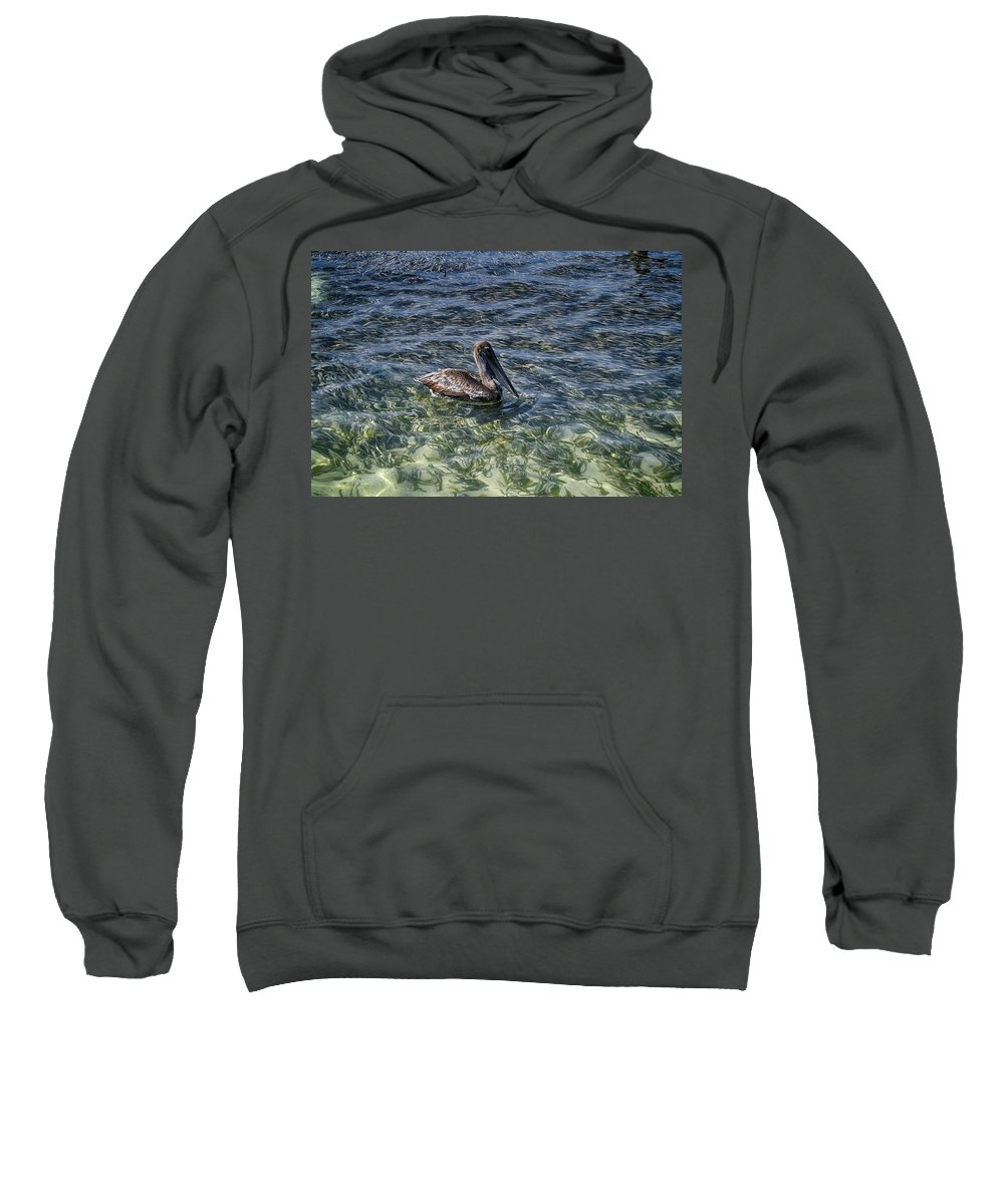 Pelican Photograph Sweatshirt featuring the photograph Pelican Floater by Kristina Deane
