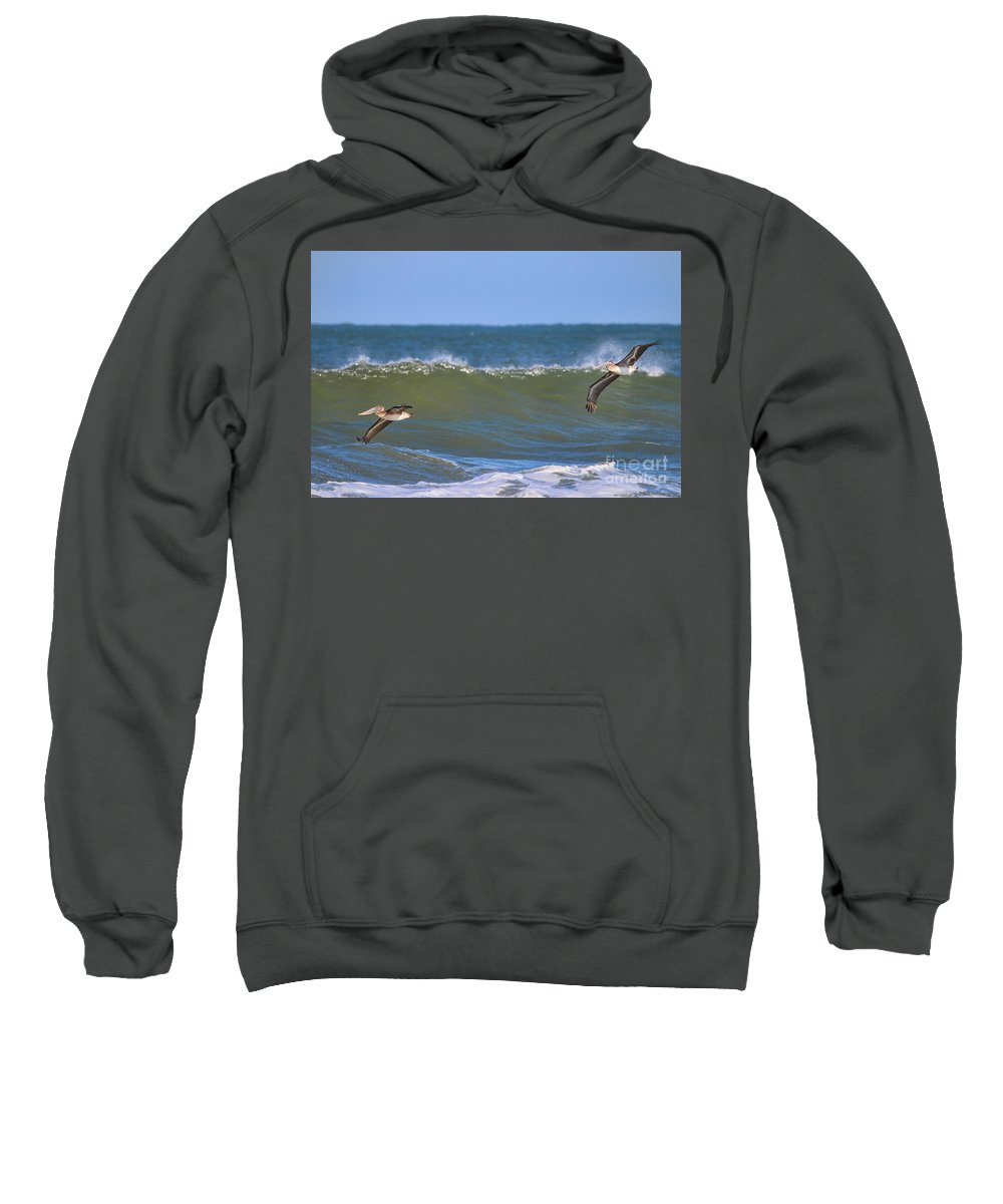 Pelicans Sweatshirt featuring the photograph Pelicans 3967 by Jack Schultz
