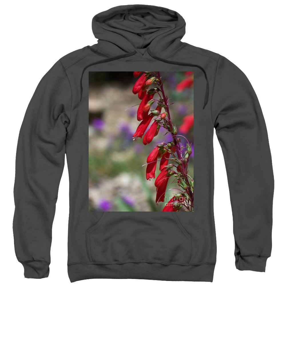 Flowers Sweatshirt featuring the photograph Penstemon by Kathy McClure