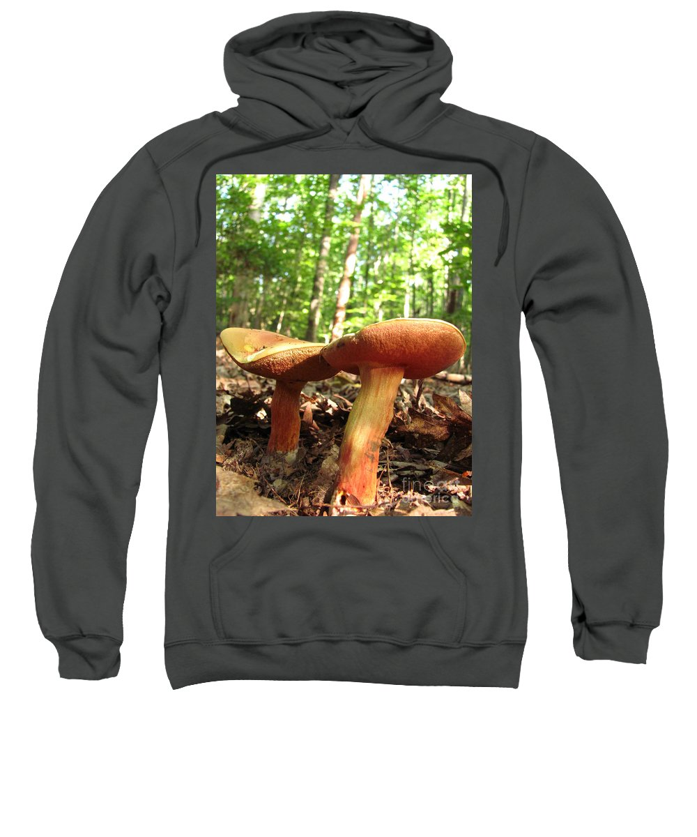 Peppery Bolete Images Peppery Bolete Prints Spicy Mushroom Pics Spicy Fungi Edible Fungi Edible Mushrooms Spore Prints Forest Fungi Maryland Mushrooms Forest Ecosystem Biodiversity Woodland Ecology Wilderness Preservation Habitat Conservation Sweatshirt featuring the photograph Peppery Bolete by Joshua Bales
