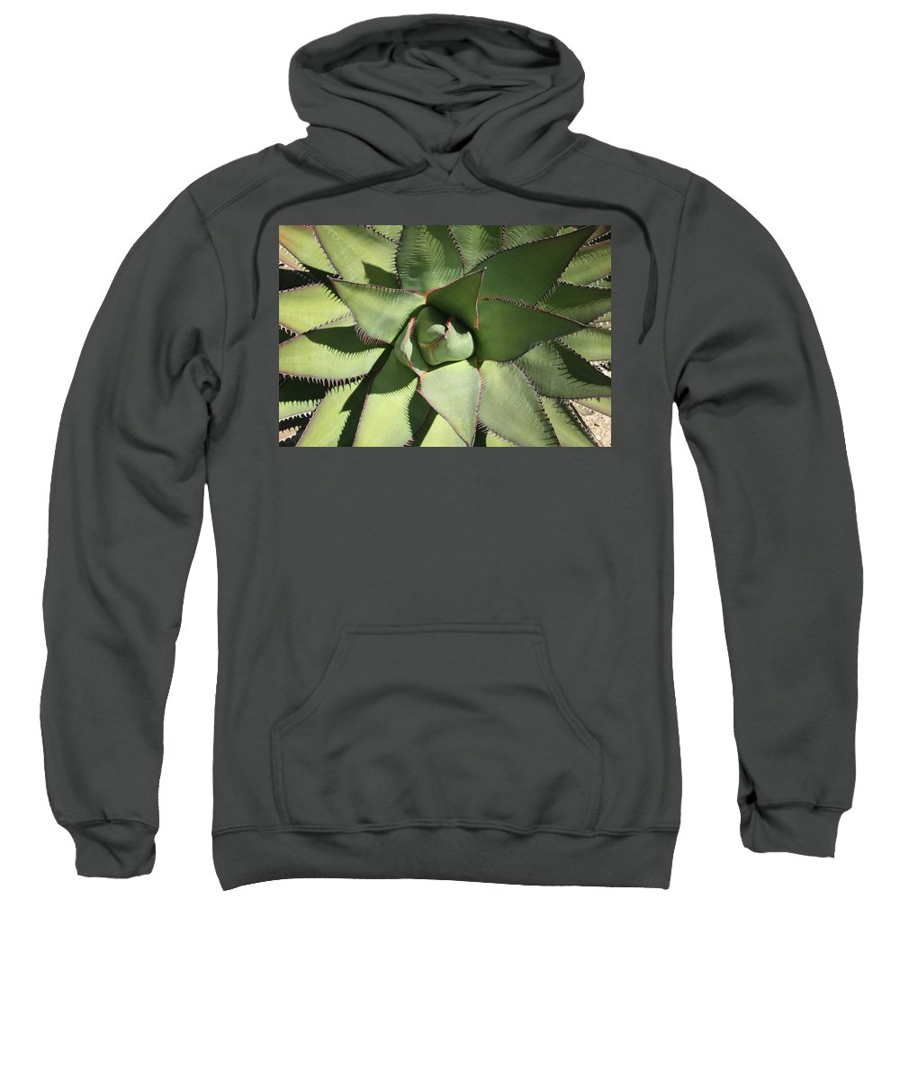 Perfect Symmetry Sweatshirt featuring the photograph Perfect Symmetry by Ellen Henneke