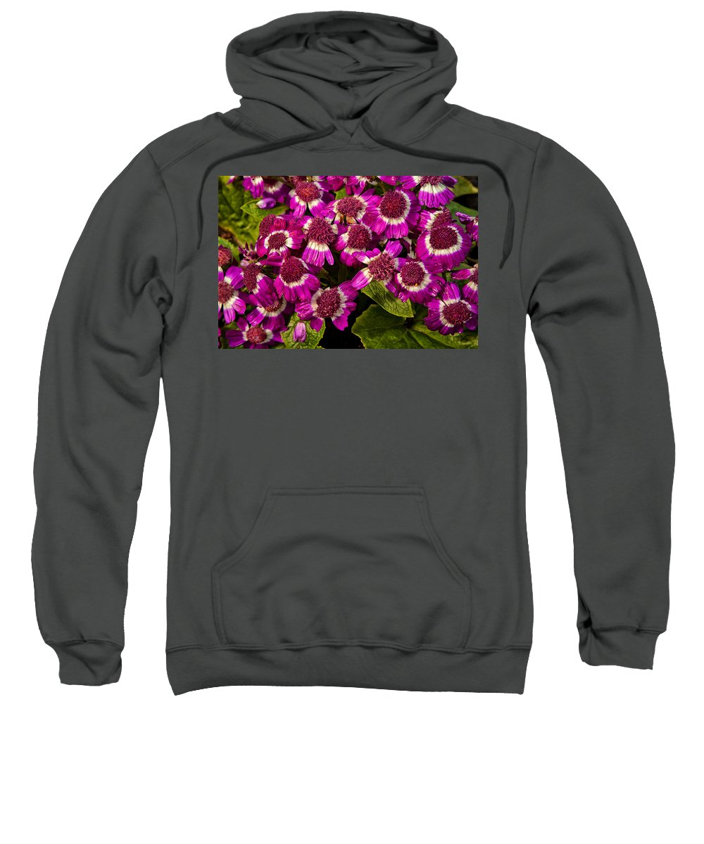 Flowers Sweatshirt featuring the photograph Petals After A Shower by Karol Livote