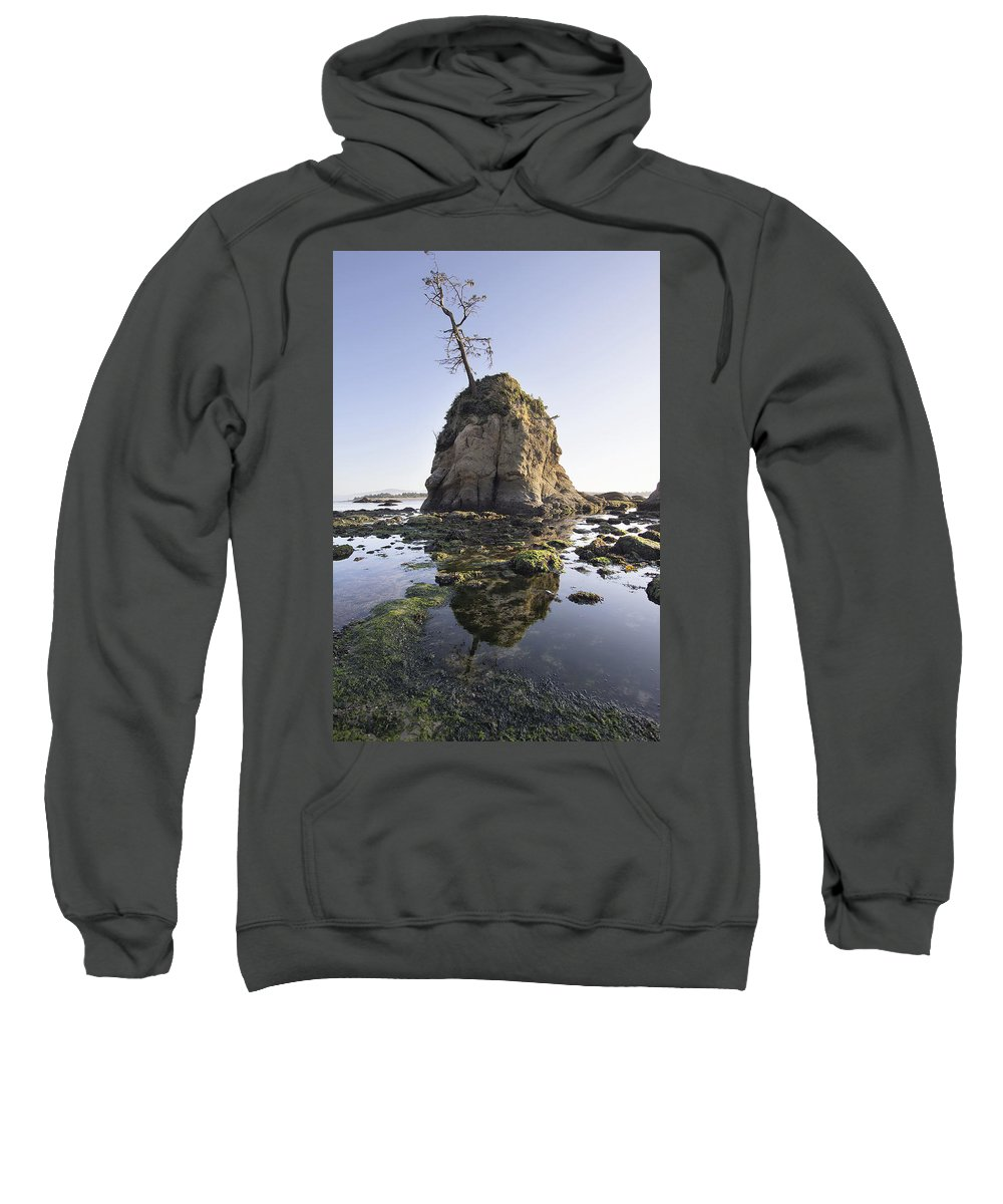Pig Sweatshirt featuring the photograph Pig And Sows Rock In Garibaldi Oregon At Low Tide by Jit Lim