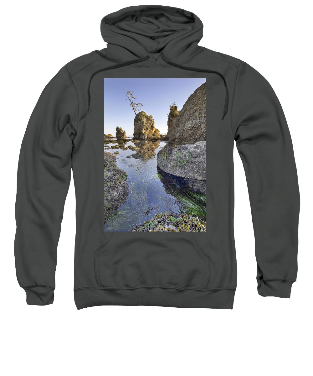Pig Sweatshirt featuring the photograph Pig And Sows Rock In Garibaldi Oregon At Low Tide Vertical by Jit Lim