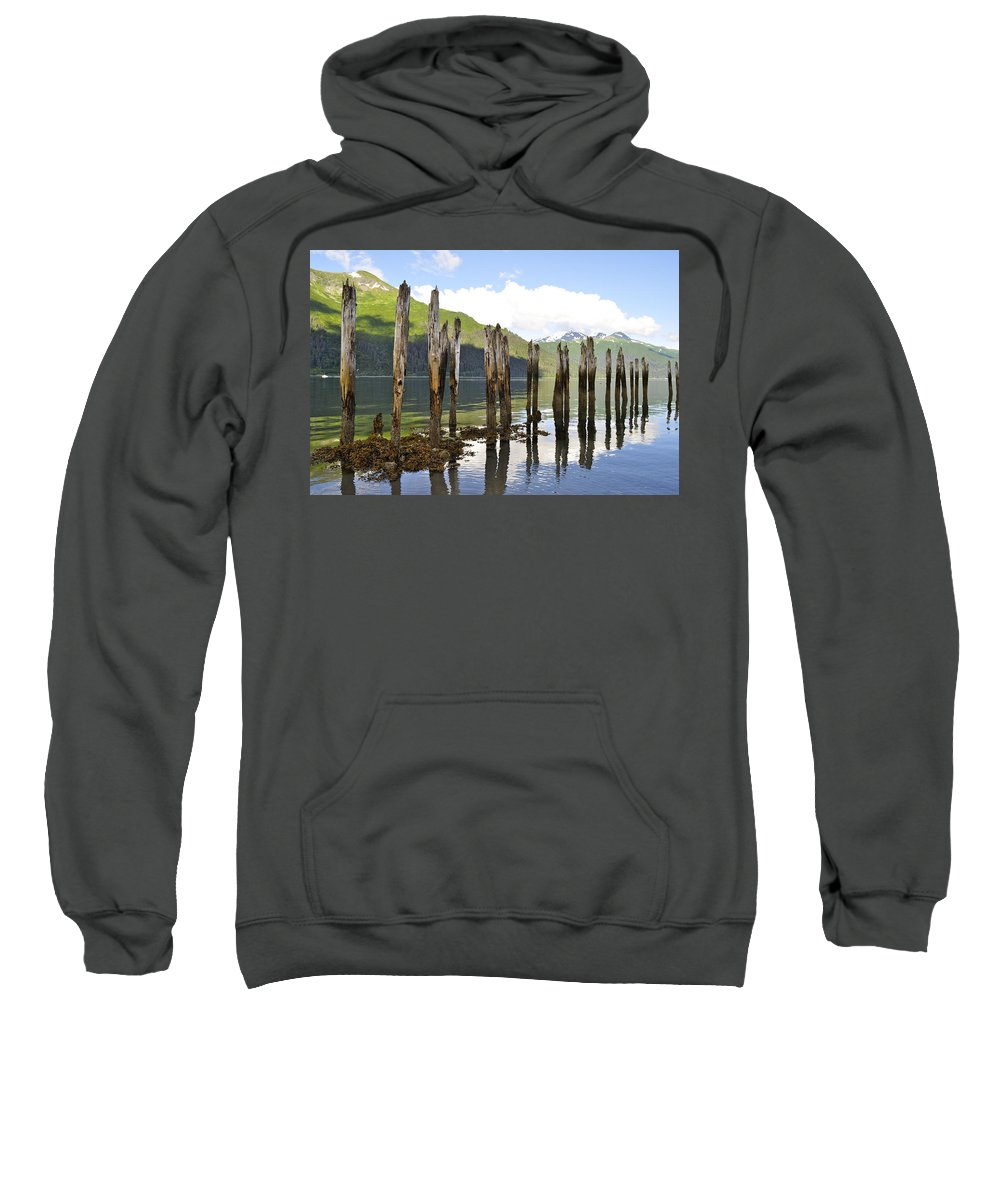 Landscape Sweatshirt featuring the photograph Pilings by Cathy Mahnke