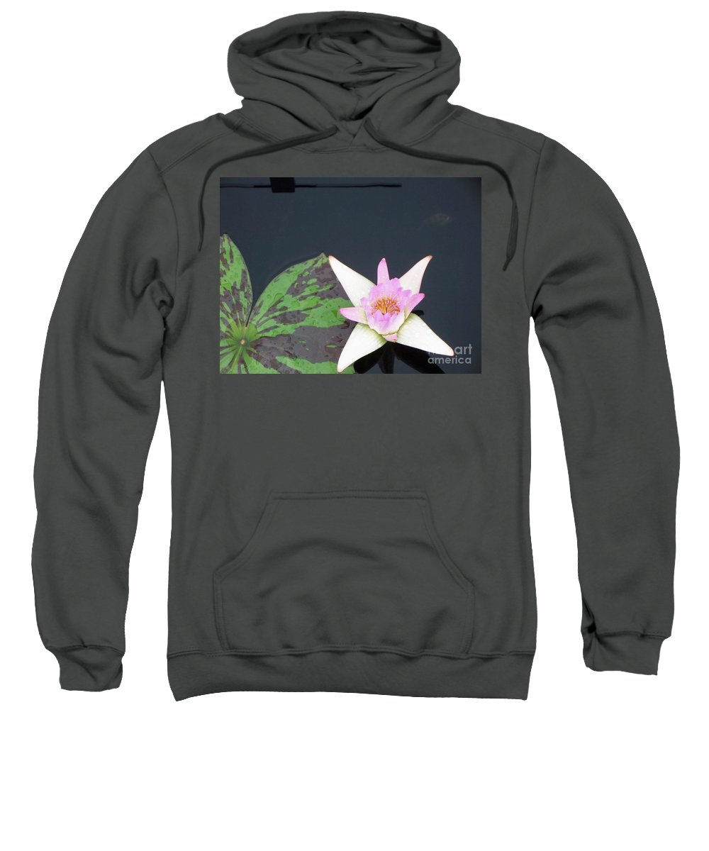 Water Lilies Sweatshirt featuring the photograph Pink And White Lily by Eric Schiabor