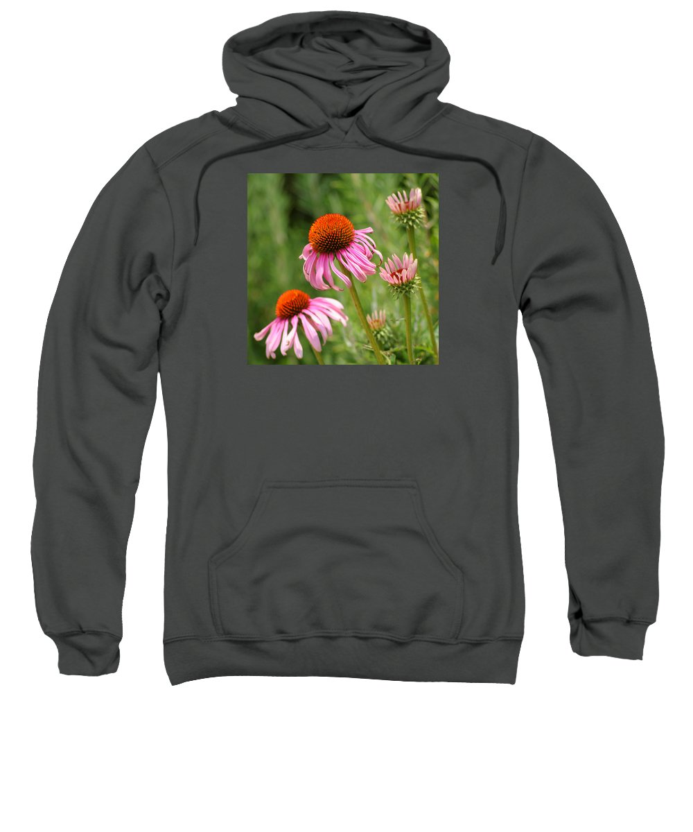Cone Flower Sweatshirt featuring the photograph Pink Cone Flower by Art Block Collections
