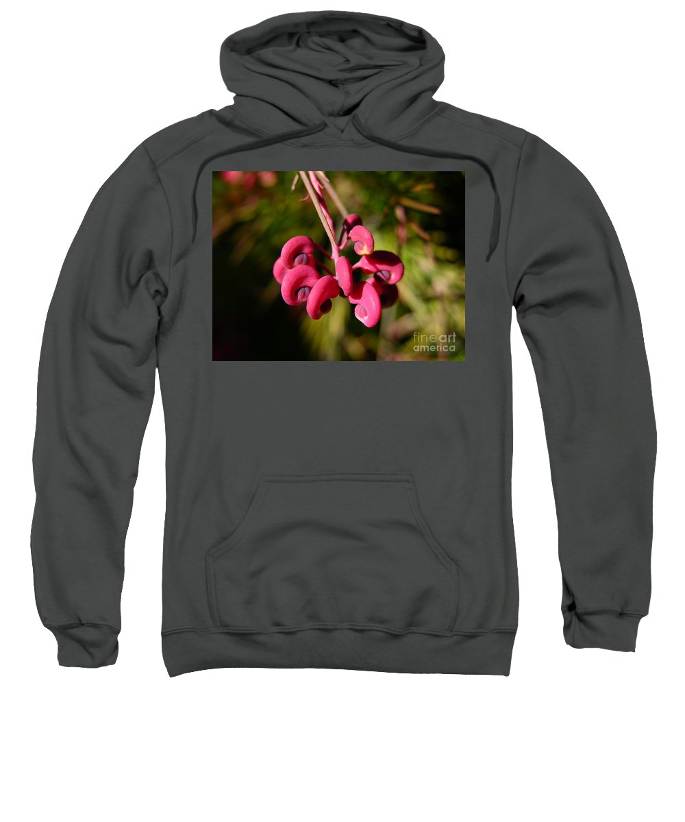 Flower Macro Sweatshirt featuring the photograph Pink Curls - Flower Macro by Carol Groenen