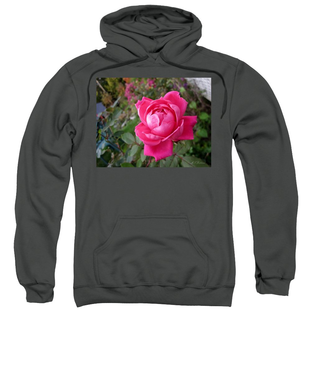 Knockout Sweatshirt featuring the photograph Pink Double Rose by MTBobbins Photography