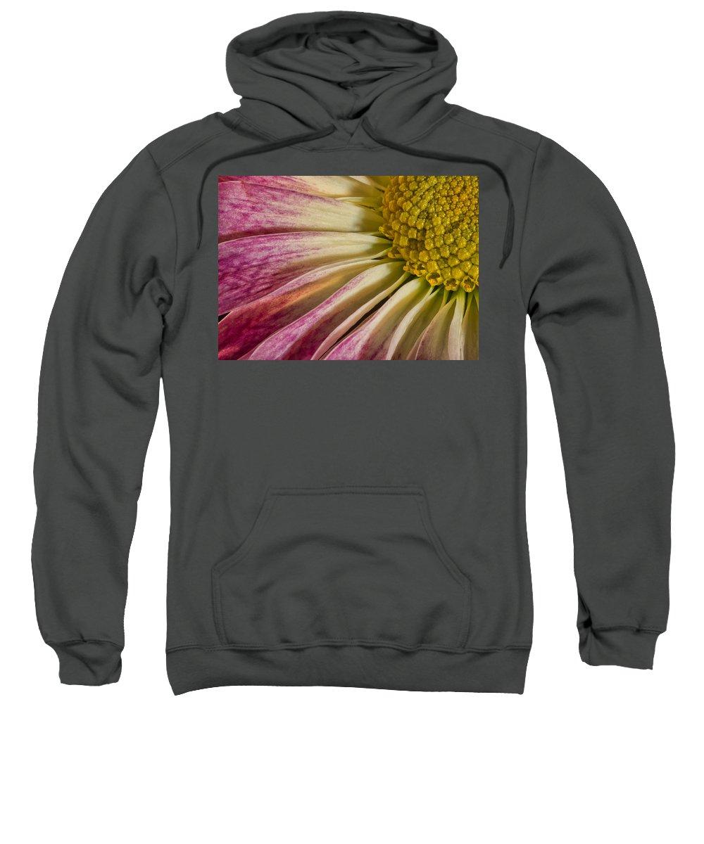 Flower Sweatshirt featuring the photograph Pink Flower Macro by Martin Belan
