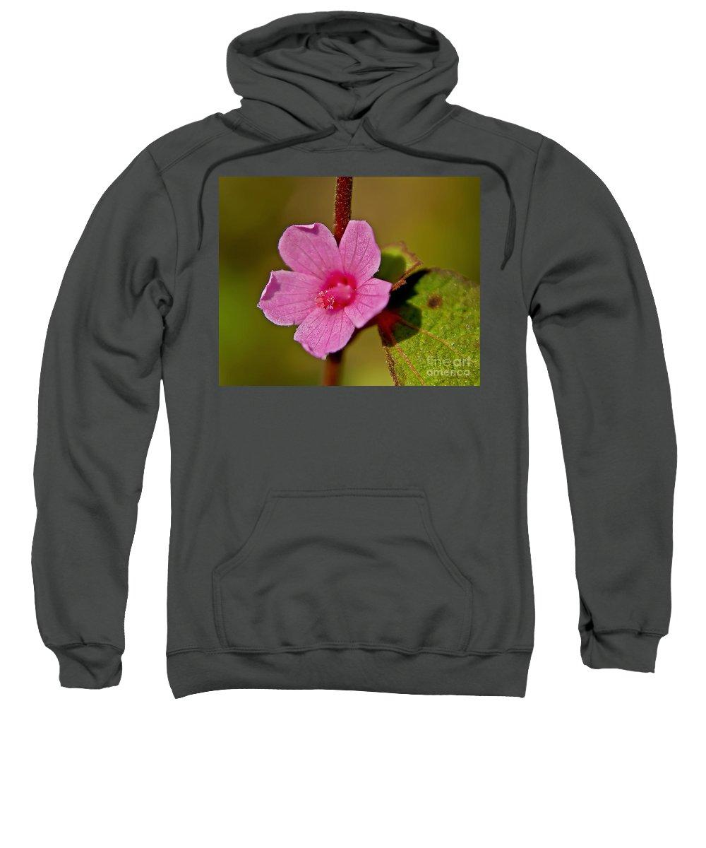 Flower Sweatshirt featuring the photograph Pink Flower by Olga Hamilton