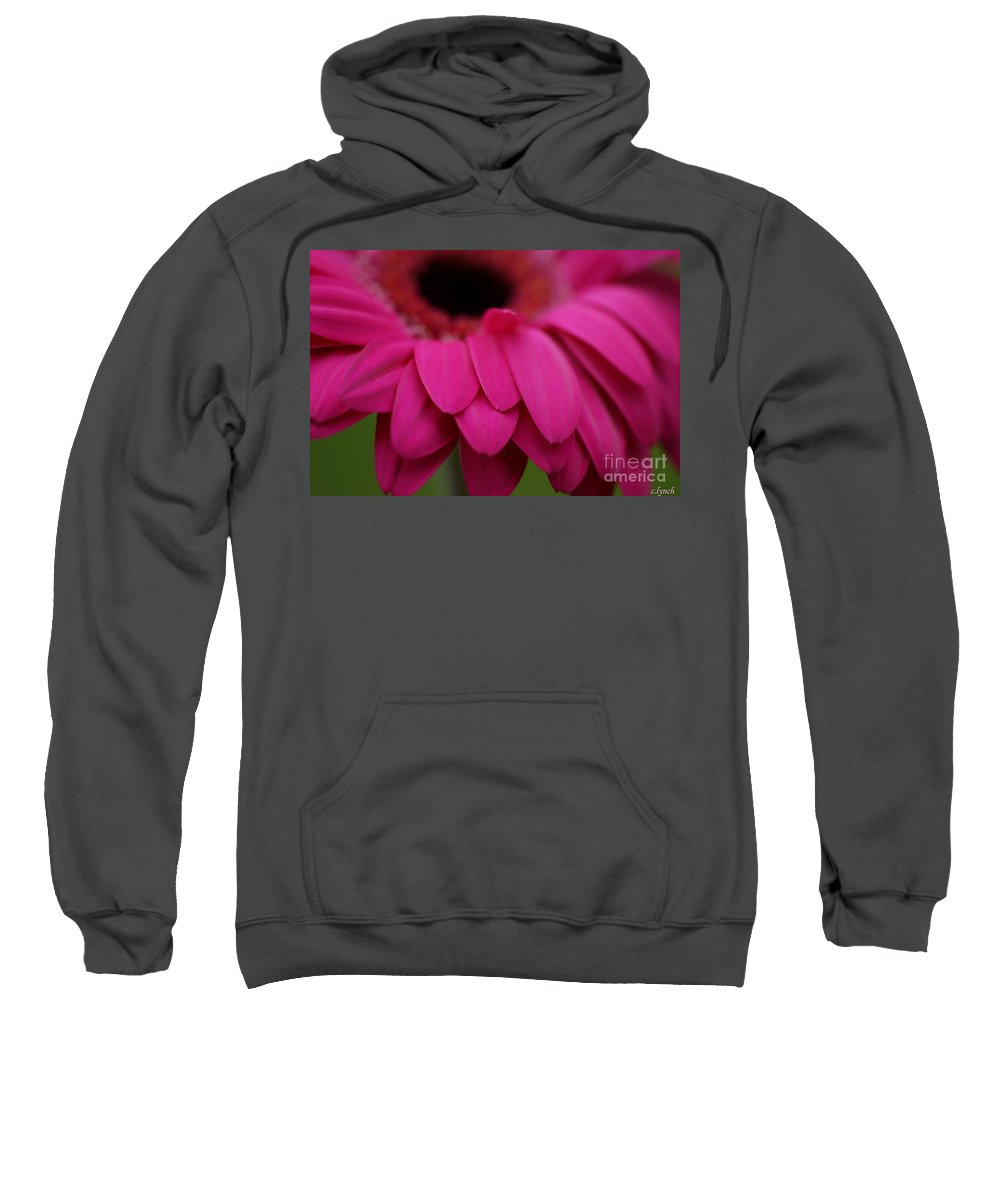 Pink Sweatshirt featuring the photograph Pink Petals by Carol Lynch