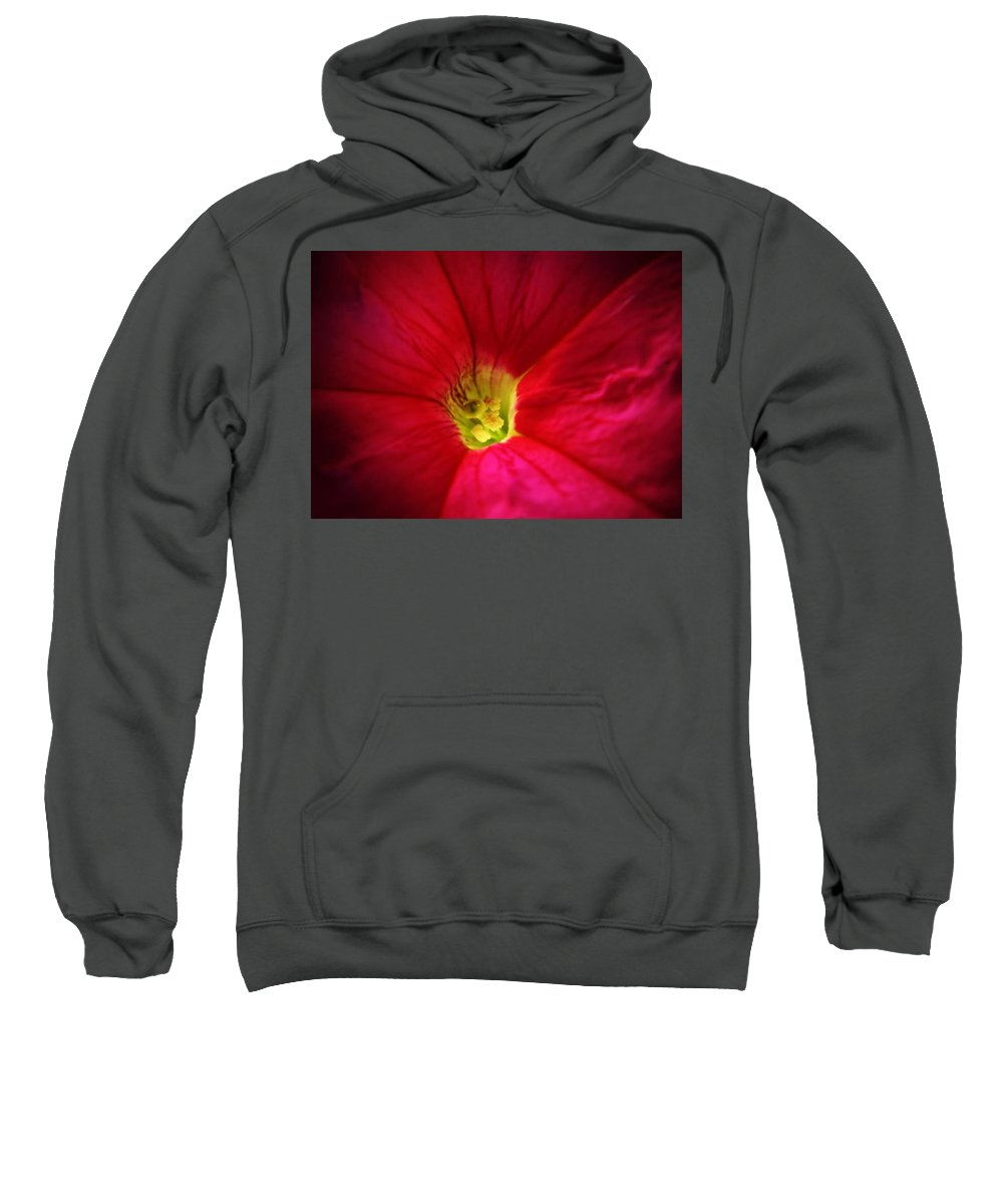 Petunia Sweatshirt featuring the photograph Pink Petunia by Chris Berry