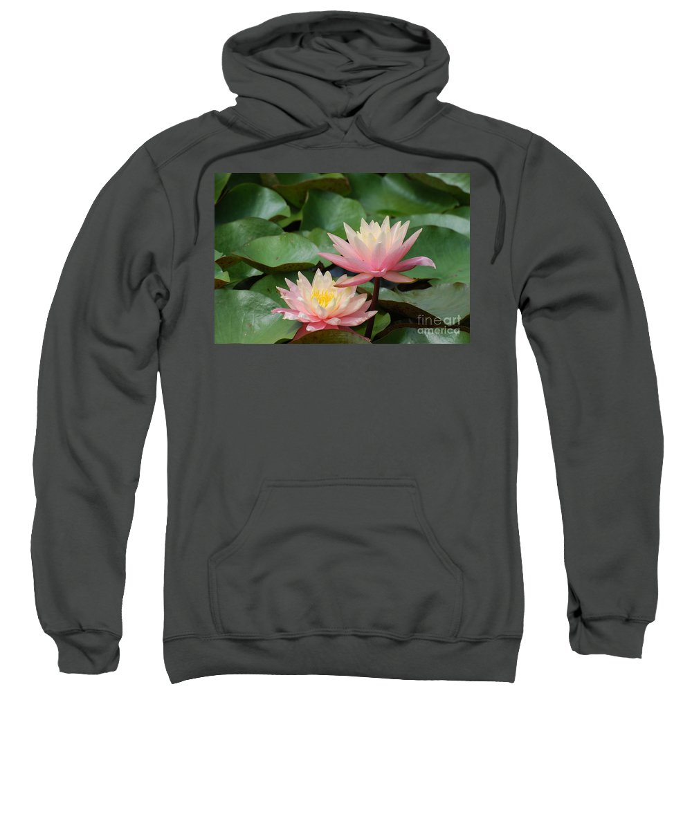 Water Lily Sweatshirt featuring the photograph Pink Water Lilies by DejaVu Designs