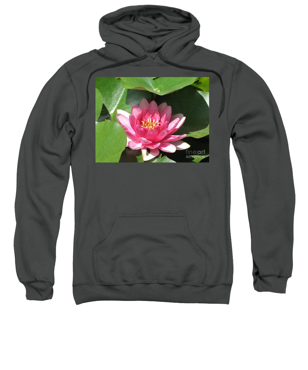 Waterlily Sweatshirt featuring the photograph Pink Waterlily by Christiane Schulze Art And Photography