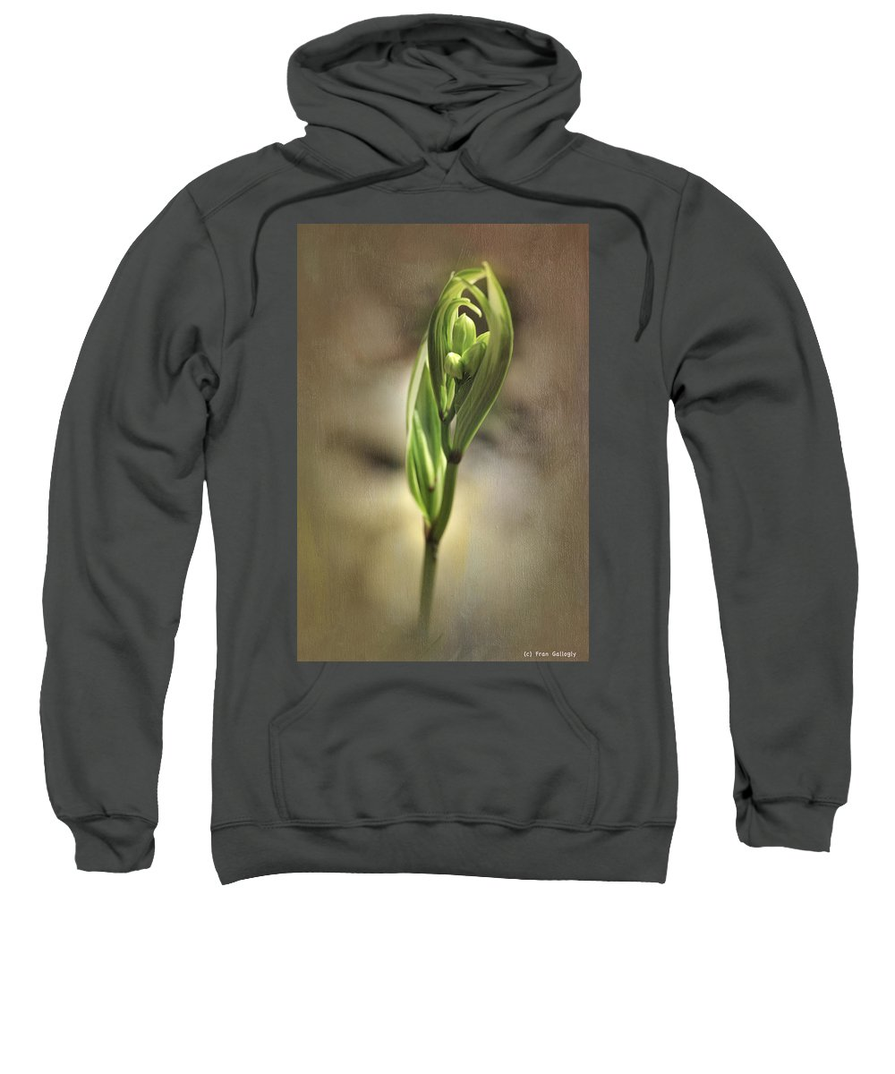 Plant Sweatshirt featuring the photograph Pirouette by Fran Gallogly