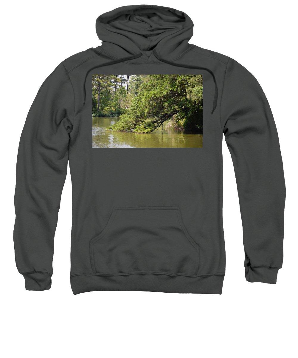 Pond Sweatshirt featuring the painting Pond At Norfolk Botanical Garden 10 by Jeelan Clark